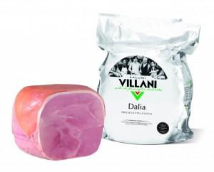 5 A  Dalia-1024x827
